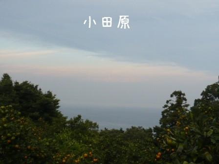 2008-11-02-02.jpg