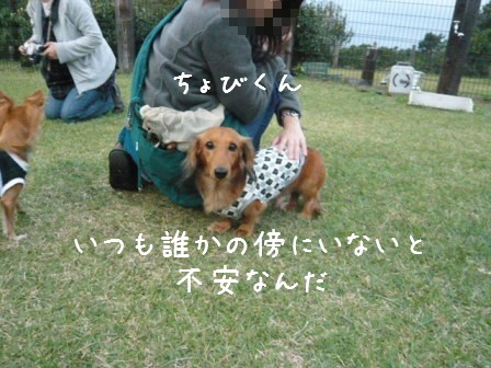 2008-11-02-09.jpg