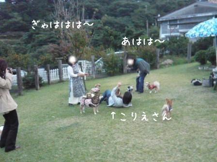 2008-11-02-16.jpg