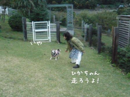 2008-11-02-19.jpg