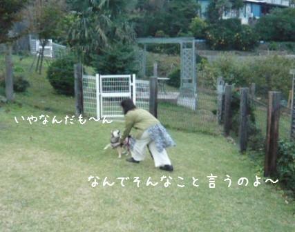 2008-11-02-20.jpg
