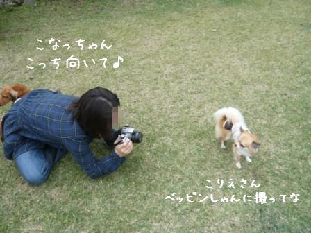 2008-11-03-03.jpg