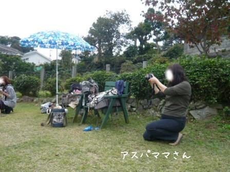 2008-11-03-06.jpg