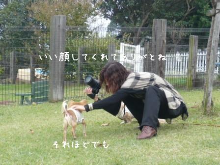 2008-11-03-08.jpg