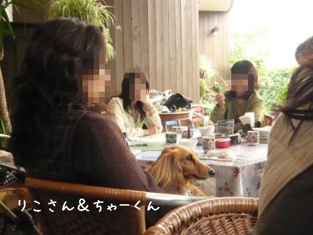2008-11-03-17.jpg