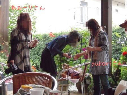 2008-11-09-01.jpg