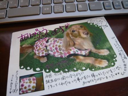 2008-11-26-01.jpg