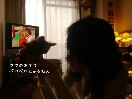 2009-01-11-09.jpg