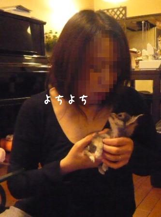 2009-01-18-04.jpg