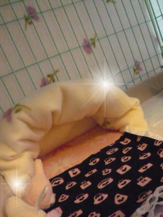 2009-01-18-07.jpg