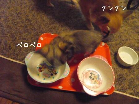 2009-01-18-10.jpg