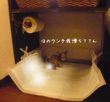 2009-01-21-02.jpg