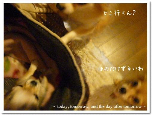 2009-02-28-01.jpg