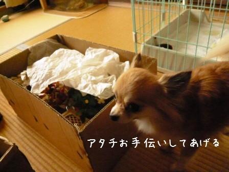 2009-03-04-02.jpg