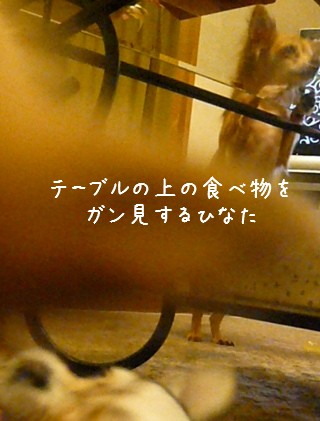 2009-03-04-07.jpg