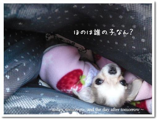 2009-03-09-05.jpg