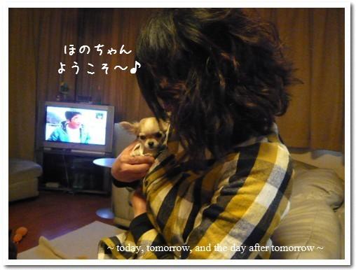 2009-03-10-07.jpg