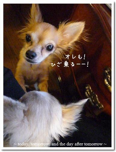 2009-03-13-01.jpg