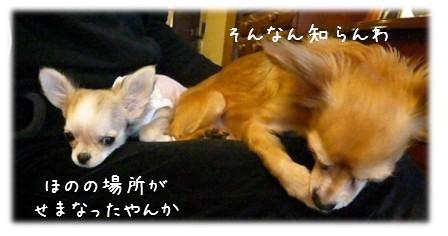 2009-03-13-03.jpg