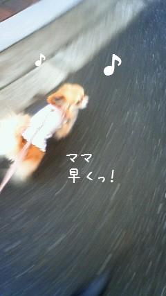 2009-03-25-01.jpg