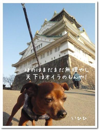 2009-04-09-04.jpg
