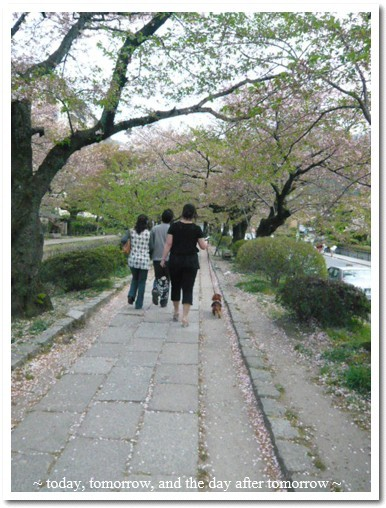 2009-04-13-09.jpg