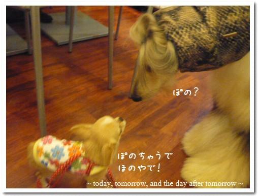2009-05-01-06.jpg