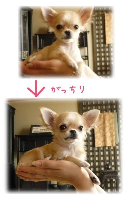 2009-05-03-09.jpg