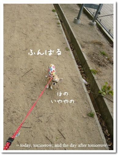 2009-05-15-01.jpg