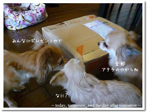 2009-05-23-01.jpg