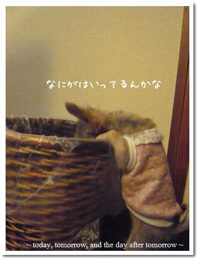 20096-03-06-01.jpg