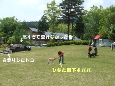 DSCF7551-a.jpg
