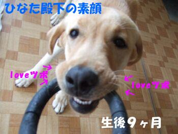 DSCF7988-a.jpg