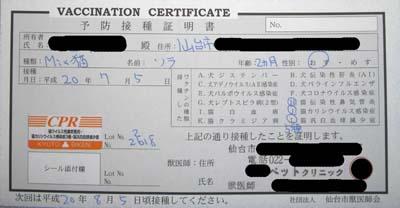certificate -sora-