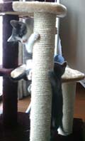 cat tower ☆