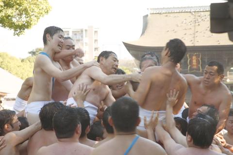 tamaseseri4.jpg