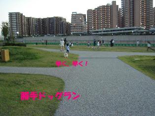 20061025200438.jpg