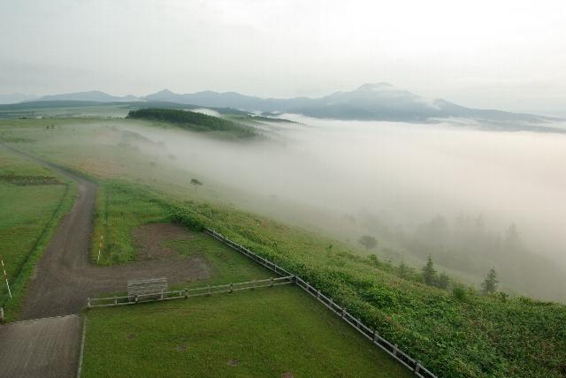 開陽台から雲海