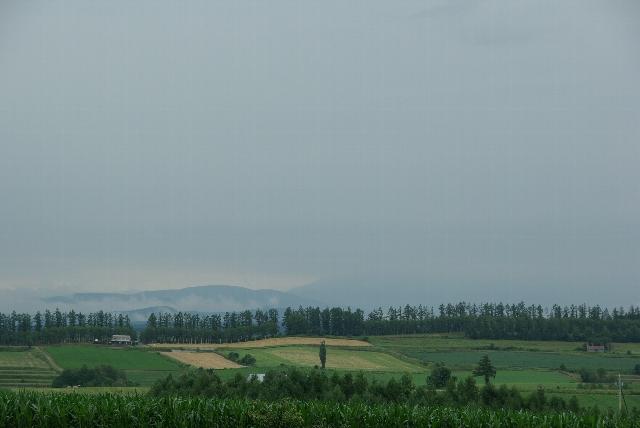新栄の丘より