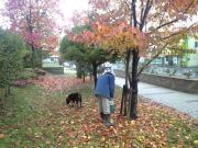 秋のうんうんWALK♪