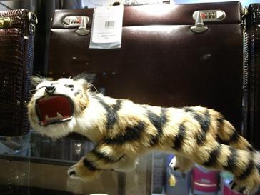 teh-ho-tigre