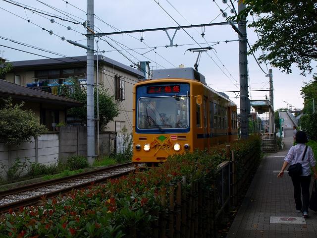 s-P9211992.jpg
