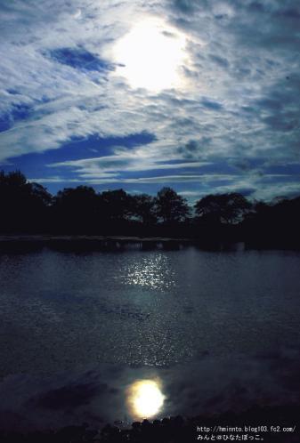 万博公園の池