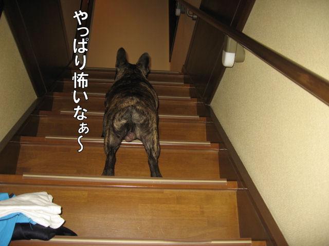 ちょっと後悔(><)