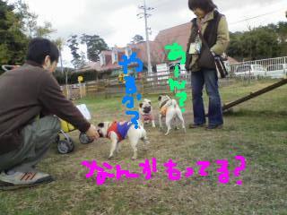 20090320141050.jpg