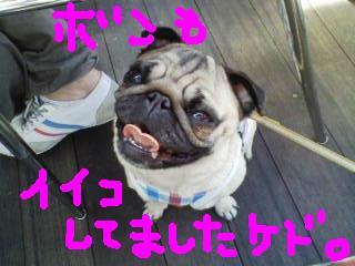 20090321130241.jpg