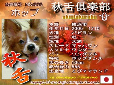 akijitakurabu-555hop.jpg