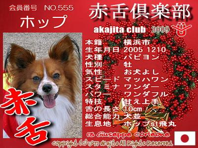 saka2009-555-hoppu_.jpg