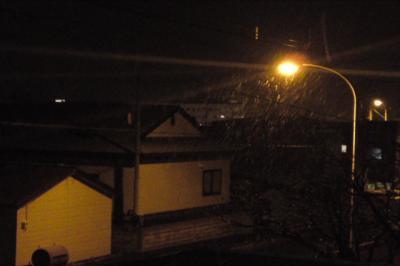 街灯に写る雪