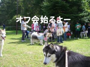 2008 HUS☆HUG 014